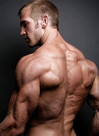 Özetle amino asitler