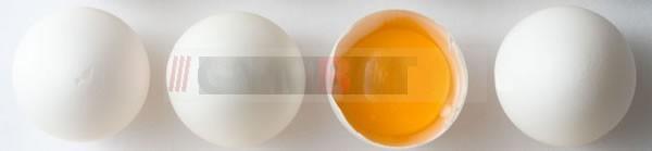 yumurta-2