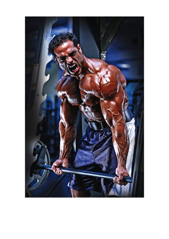 body antrenman programları