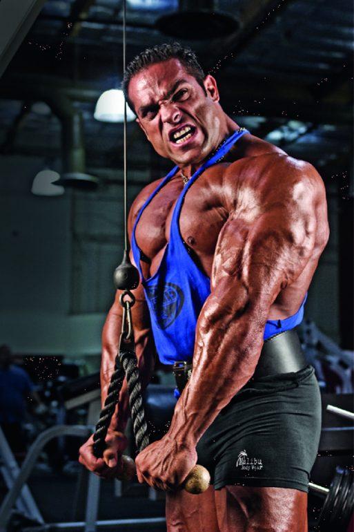 triceps kasını çalıştırma