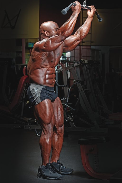 Reverse-Grip Straight-Arm Pulldown