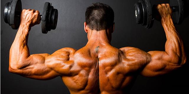Yanlış Bilinen Protein Tozu Efsaneleri     Gymbat