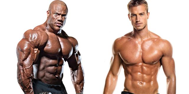 fitness-bodybuilding