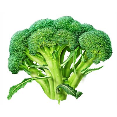 brokoli-gymbat